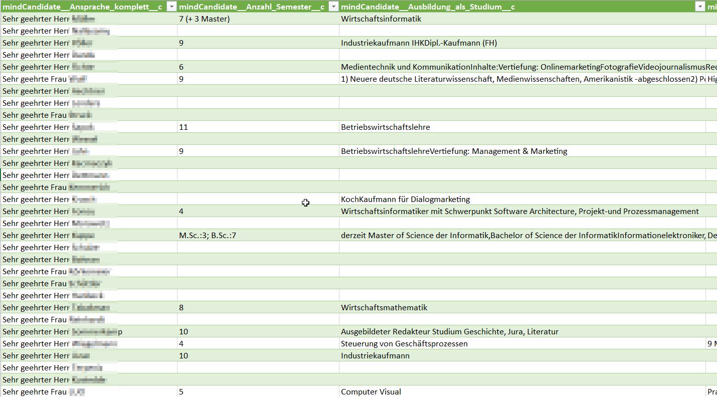 Salesforce Microsoft Power Query for Excel: Export der Rohdaten aus dem Objekt in Excel