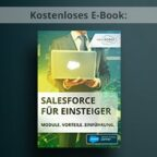 250x250mindforce_ebook_Salesforce-für-einsteiger_google-ad_20170412_