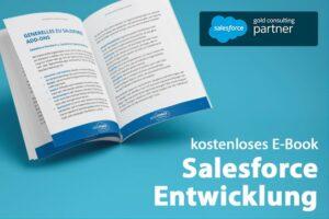 e-book salesforce entwicklung