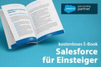 salesforce für Einsteiger