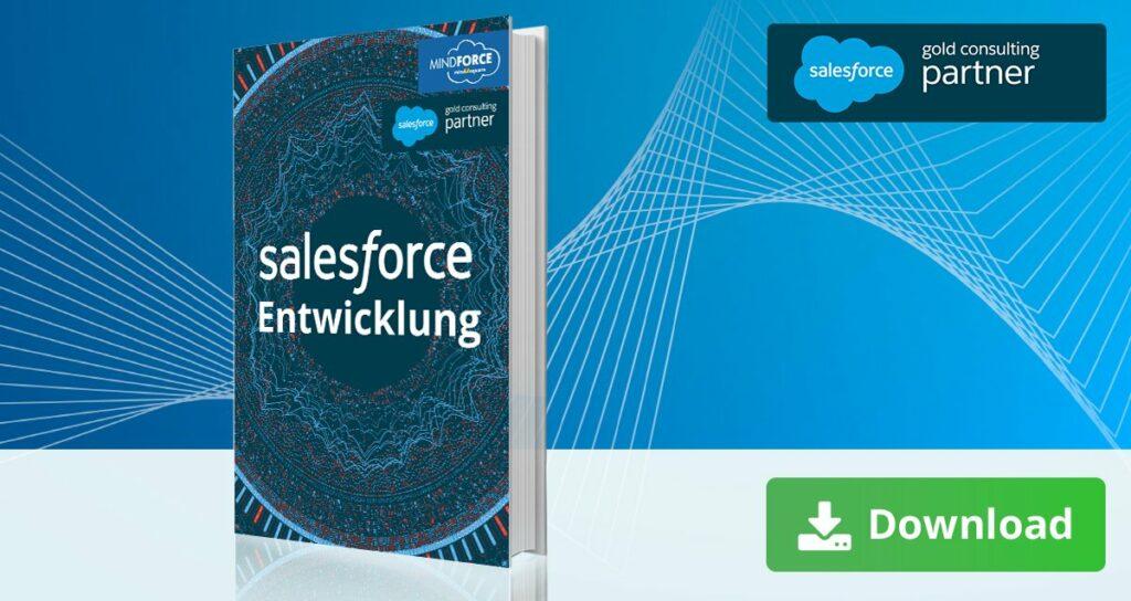 Salesforce Entwicklung E-Book zum Download