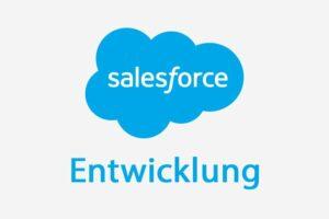 Salesforce Entwicklung mit Apex