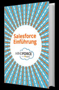 Buchgrafik-groß_mindforde_saleforce_Einführung_170425