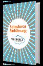 Salesforce Einführung