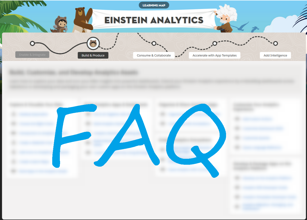 Einstein Analytics FAQ
