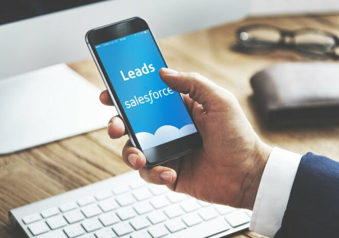 Salesforce Lead App - salesforce kampagne