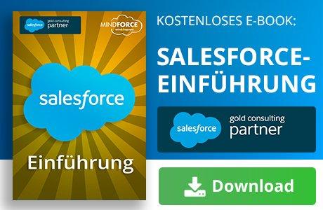 Unser E-Book zum Thema Salesforce-Einführung