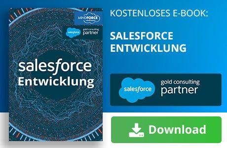Unser E-Book zum Thema Salesforce Entwicklung