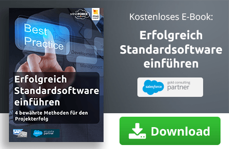 E-Book zum Thema erfolgreich Standardsoftware einführen