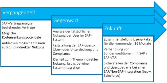 SAP Lizenzberatung