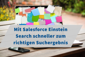 Salesforce Einstein Search
