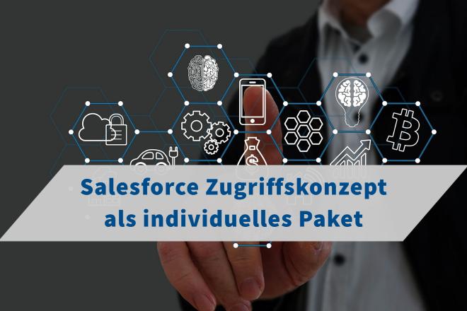 Salesforce Zugriffskonzept